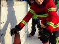 2018-WiWo-Eislaufen-30