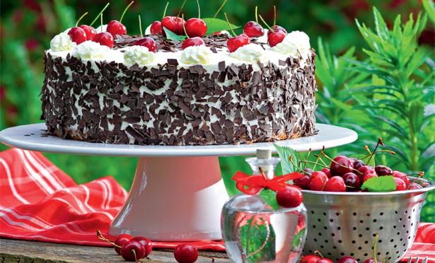Torten und Kuchen gesucht!